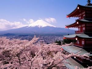 japanlandscapejapan4194