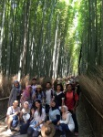 Arashiyama (Without Nagoya Team)